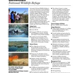 Savannah National Wildlife RefugeView Whole Document as HTMLView in Page by Page Viewer